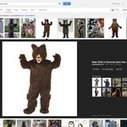 Google Image Search Changes Have Not Been Kind To Webmasters | Webmaster Apprentice - All about Google | Scoop.it