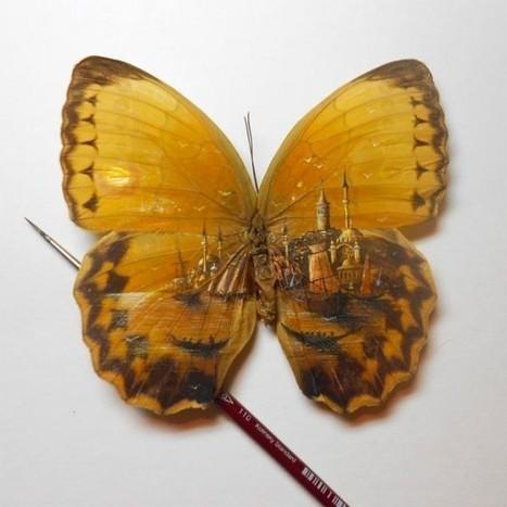 Talented Artist Paints on Butterfly Wings | Strange days indeed... | Scoop.it