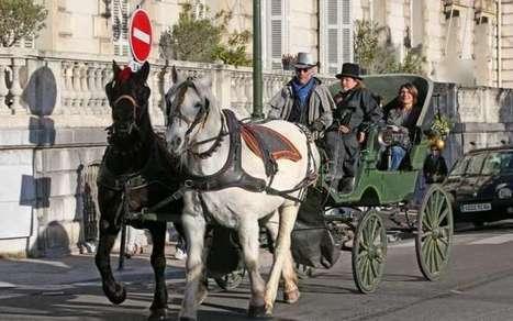 Jouets anciens: Solidarité à Pau : où donner vos anciens jouets pour Noël ?   COLLECTION DE JOUETS ANCIENS   Scoop.it