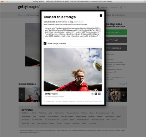 Getty Images makes 35 million images free in fight against copyright infringement | brave new world | Scoop.it