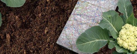 School Garden Network   Learning & Geography   Scoop.it