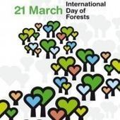 """1st International Day of Forests celebrated in Ethiopia: """"Forests: our Lives, our Future"""" 