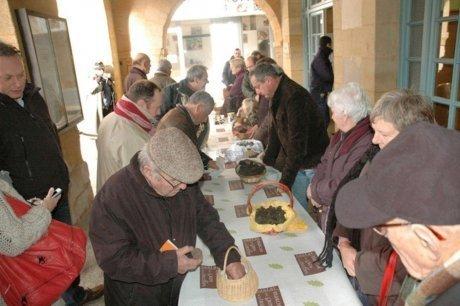 Sarlat (24) : des truffes négociées à 700 euros le kilo | Agriculture en Dordogne | Scoop.it