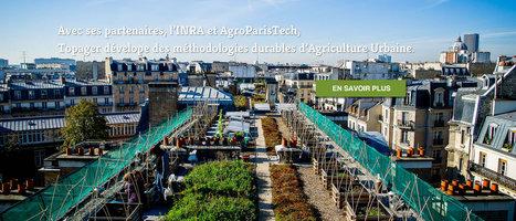 Topager | Experts en Ecosystèmes Urbains | Matériaux | Scoop.it