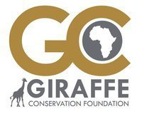 Giraffe Conservation Foundation | Tessa Winship.com Children's Picture Books | Scoop.it