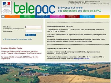 Déclaration Pac : La date limite repoussée au 15juin | Filière apicole française | Scoop.it