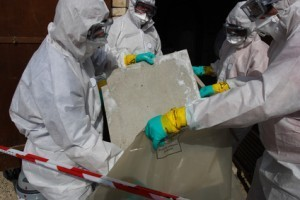 NEWS from Australia: More Women diagnosed with asbestos related diseases | Asbestos and Mesothelioma World News | Scoop.it