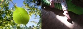 [訪]16個小時的美好間距 – Jill & Ruru 攝影作品 | ㄇㄞˋ點子靈感創意誌 | 攝。情 | Scoop.it
