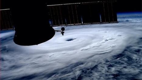 Meteorologists predict 4 to 8 Atlantic hurricanes this year | Nova Scotia Business News | Scoop.it