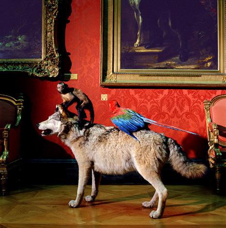 Cinq musées confidentiels à Paris | Merveilles - Marvels | Scoop.it