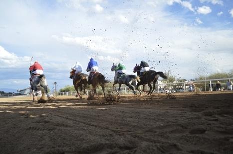 UA aids in return of local racetrack | Arizona Daily Wildcat | CALS in the News | Scoop.it