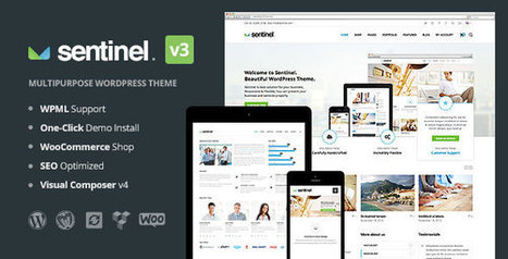 Download Sentinel v3.0 - Responsive Multi-Purpose Theme - Slicontrol.Net | Free Download Premium Wordpress Themes and Plugin | Scoop.it