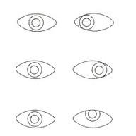 רופאעיניים.co.il   רפואת עיניים   Scoop.it