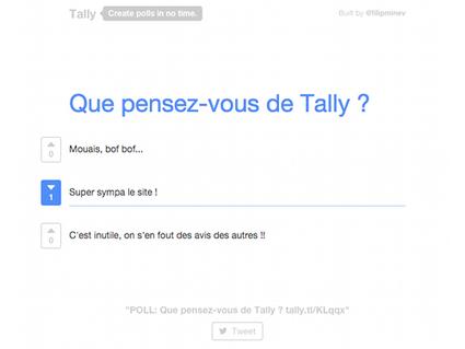 Tally, pour créer des mini-sondages en ligne rapidement | Outils | Scoop.it