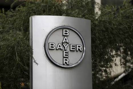 Bayer Makes New Offer for Monsanto | MAG Market Intelligence | Scoop.it