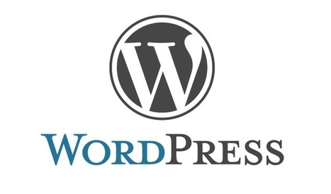 10 Premium WordPress Themes for Affiliate Marketing 2014 | Online Business Success | Scoop.it