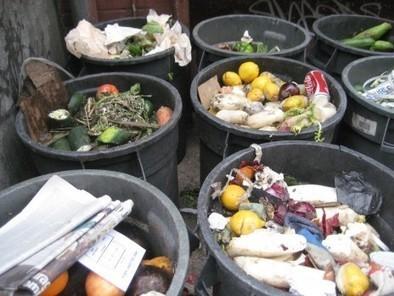 Le cercle vicieux du gaspillage alimentaire | ENTREPRISE & ENVIRONNEMENT | Scoop.it