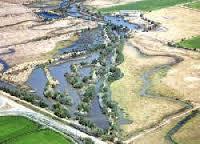 California reforms conservation bank framework - Western Farm Press | Nature + Economics | Scoop.it
