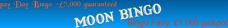 Blow Bingo Gaming Fun with Moon Bingo Offers   UK Bingo Place   Scoop.it