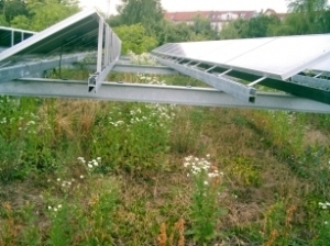 Green Roof Or PV? | Eco-friendly roofs:  green, white, and garden | Scoop.it