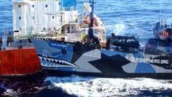 Japan wil actie tegen Sea Shepherd | japan | Scoop.it