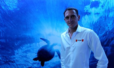 Tank Talk: Human dolphin William Trubridge, the greatest freediver of all time | Apnée | Scoop.it