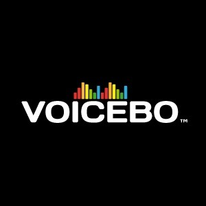 VoiceBo - Why Type when You can Talk? A New Voi...