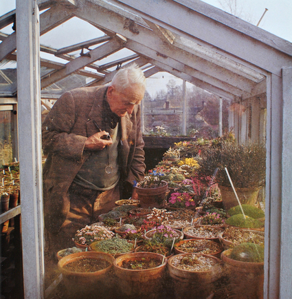 J.R.R. Tolkien in his greenhouse, as photographed... | Wallace Gardens | Annie Haven | Haven Brand | Scoop.it