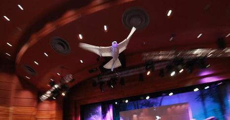 A robot that flies like a bird | Robots and Robotics | Scoop.it