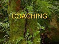 PSICOSYSTEM: Coaching | Comunicación interpersonal en estructuras de trabajo social | Scoop.it