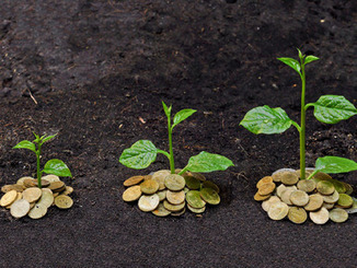 Enterprise Ireland offering up to €65m for co-investment in seed funds | Doing business in Ireland | Scoop.it
