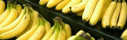 Ten Amazing Facts About Bananas | Ten Reasons and Advice | Entertainment1 | Scoop.it