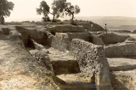 Asta Regia, entre el mito y el olvido | Arqueología romana en Hispania | Scoop.it