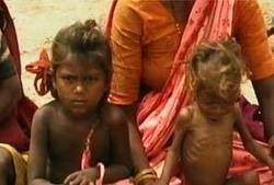 How malnutrition impacts learning - NDTV | WASH & Nutrition | Scoop.it