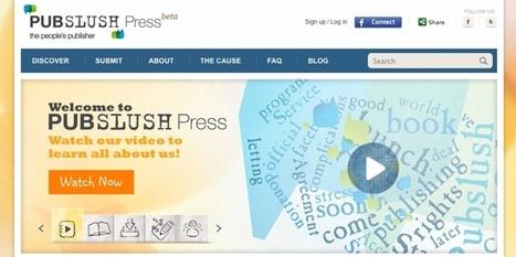 Pubslush – crowdsourcing para creación editorial de libros   Recull diari   Scoop.it