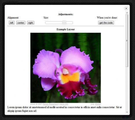 Wylio – Moteur de recherche de photos sous licence Creative Commons | SlyDnet | Trucs et astuces du net | Scoop.it