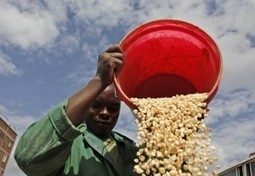 The challenges of food security and sustainability | Alimentation durable | Scoop.it