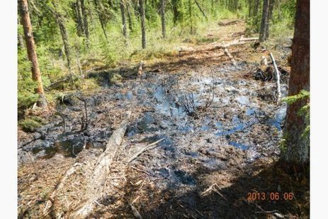 Seeping Alberta Oil Sands Spill Covers 40 Hectares, Still Leaking | Sustain Our Earth | Scoop.it