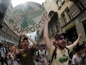 Ya es legal el cannabis medicinal checo | thc barcelona | Scoop.it
