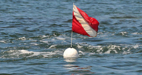 Flag systems regulate boat traffic around scuba-diving sites | All about water, the oceans, environmental issues | Scoop.it