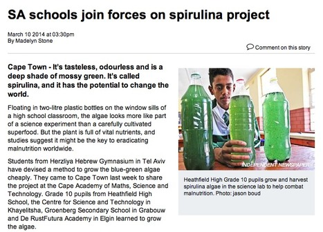 Community- and school-based Spirulina projects could dent the devastation of hunger in South Africa. | Technology, Education, Learning and Life in Southern Africa | Scoop.it