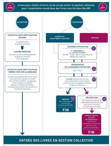 La CJUE décapite ReLire, le régime français des livres indisponibles | Edition : les outils, leurs appropriations et les formations | Scoop.it