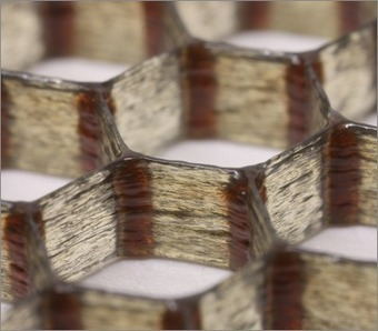Carbon-fiber epoxy honeycombs mimic the material performance of balsa wood : Wyss Institute at Harvard | IComputation | Scoop.it