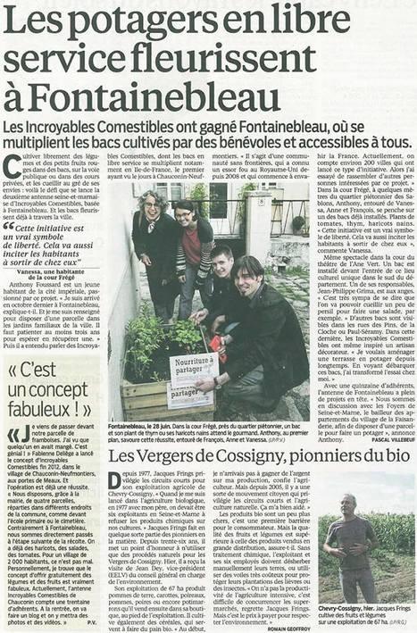 """SEINE ET MARNE: """"Les potagers en libre service fleurissent à Fontainebleau""""   Vivi   Scoop.it"""