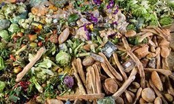 How the US can solve its multibillion food waste problem  - report | Vertical Farm - Food Factory | Scoop.it