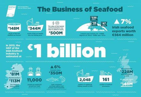 Bord Iascaigh Mhara to maximise the value of Ireland's €1 billion seafood industry | Aquaculture Directory | Aquaculture Directory | Scoop.it