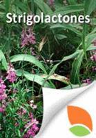 TTPB15 revised: Strigolactones | Plant-Microbe Interaction | Scoop.it