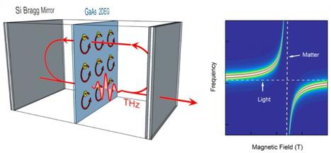 Light and matter merge in quantum coupling | Amazing Science | Scoop.it