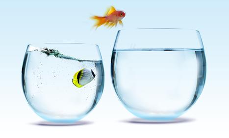 Five Key Steps to Habit Change | Self development ideas | Scoop.it