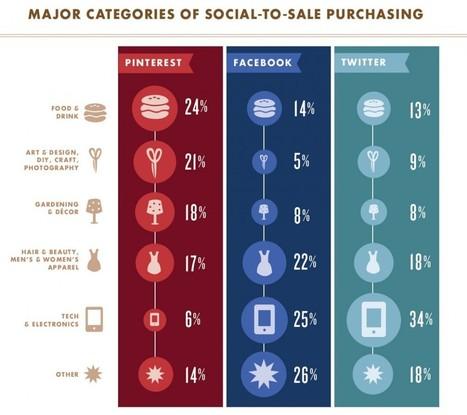 Quel est l'impact des réseaux sociaux sur les v...   Marketing digital think tank   Scoop.it